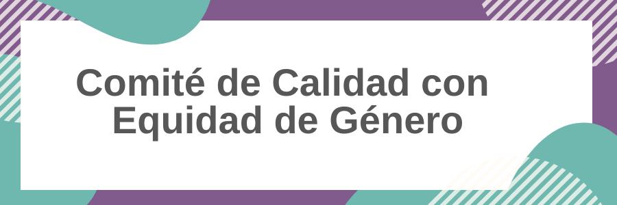 Comunicado del Comité de Calidad con Equidad de Género de FVET