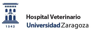 Convocatoria 2019 para realizar estancias prácticas en la Universidad de Zaragoza