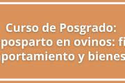 """Curso de Posgrado: """"Parto y posparto en ovinos: fisiología, comportamiento y bienestar"""""""