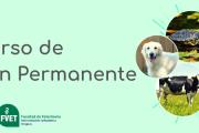"""Educación Permanente: """"5° Seminario Uruguayo de la Fundación Davis/Thompson"""""""