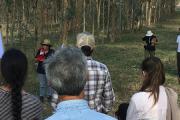 Se realizó la Jornada de Silvopastoreo: una oportunidad para conocer más - Resultados de proyectos INIA-FPTA 300 y 311