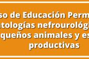 Curso de Educación Permanente: Patologías nefrourológicas en pequeños animales y especies productivas