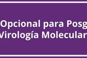 Curso Opcional para Posgrado - Virología Molecular