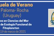 Escuela de Verano La Paloma 2021