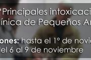 """Curso: """"Principales intoxicaciones en la Clínica de Pequeños Animales"""""""