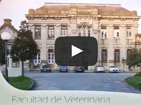 Video de la Facultad de Veterinaria